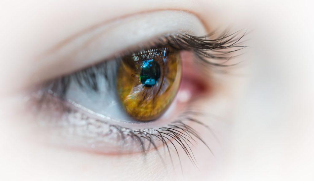 Iris Diagnose die Analyse zur Prävention steht im Vordergrund